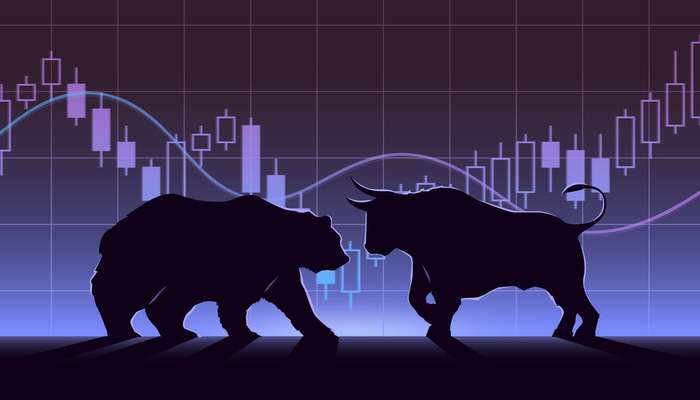 Understanding the bear and bull markets