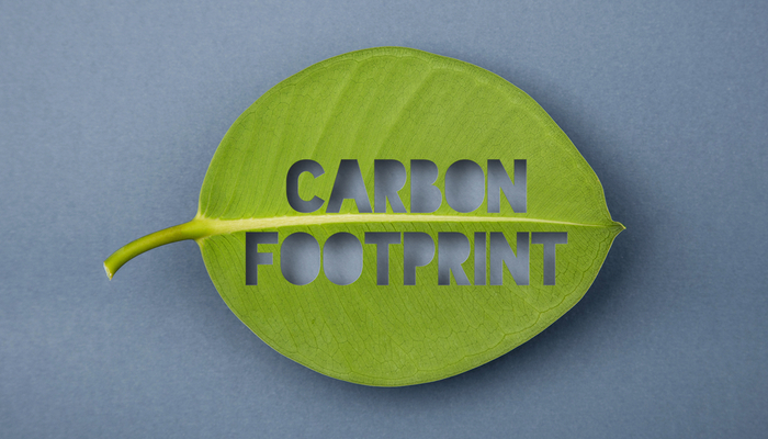 World-renowned companies aim to be carbon-free by 2050