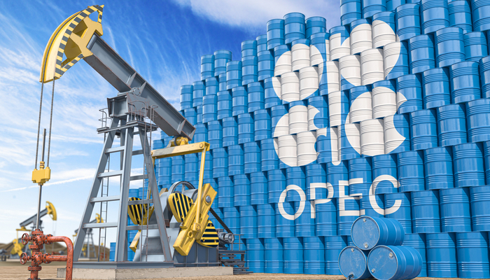 OPEC+ members finally reached a consensus
